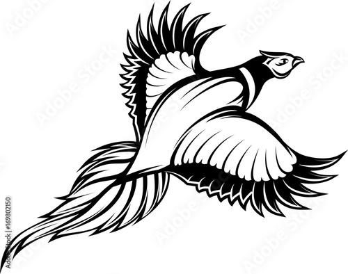 Canvas Print vector illustration of a stylish monochrome flying pheasant