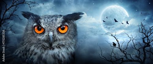 Fototapeta premium Wściekły puchacz w świetle księżyca w strasznym lesie - scena Halloween