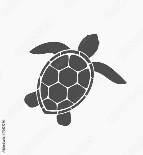 Fototapeta premium Ikona żółwia morskiego