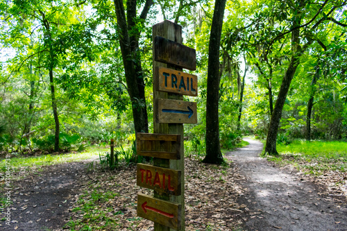 Canvas Print wooden trail sign where the nature path splits into two seen while hiking on a h