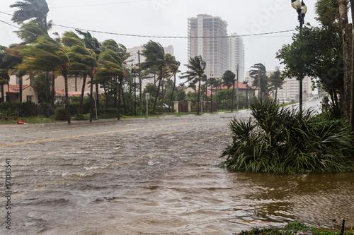 Fotografia, Obraz Hurricane Irma and tropical storm at Fort Lauderdale, Florida.