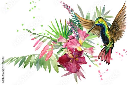 Fototapeta premium piękna tropikalna natura. egzotyczny raj kwiatowy tło. roślina dżungli, ptak i kwiaty. Koliber. akwarela las deszczowy ilustracja.