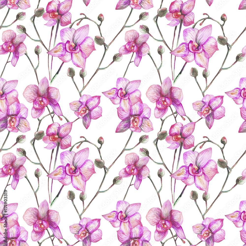 piękne oryginalne czerwone kwitnące storczyki. akwarela <span>plik: #171903319 | autor: maya2016</span>