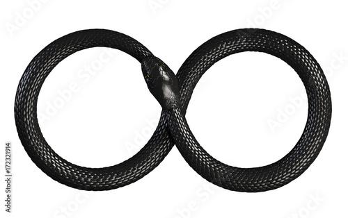 Fototapeta premium Wąż pożerający własny ogon. Nieskończony Symbol. Ilustracja 3D