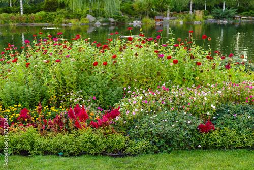 Obraz na płótnie flowerbed with flowers in a park with landscape design