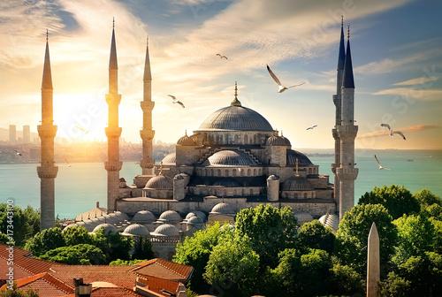 Fototapeta Seagulls over Blue Mosque