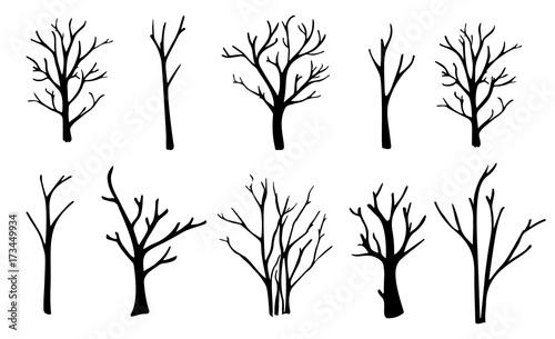 Vászonkép Naked trees silhouettes set. Hand drawn isolated illustrations.