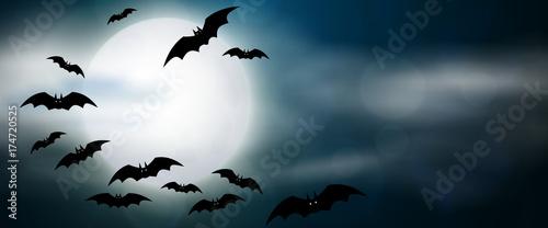 Leinwand Poster Night, full moon and bats, horizontal banner