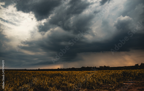 Obraz na plátně Pictures before the formation of a great dark and dramatic storm clouds