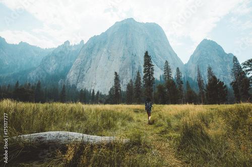 Fototapeta Girl walking in the meadow
