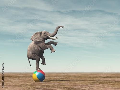 Tela Surreal image of an elefant balancing