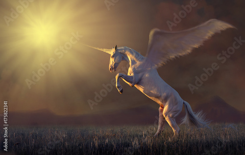 Wallpaper Mural Pink unicorn with the wings reared in the grass on mountains background