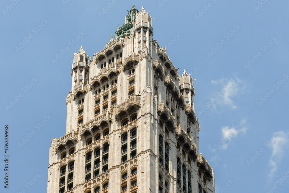 Woolworth Building - New York City <span>plik: #176339938   autor: demerzel21</span>