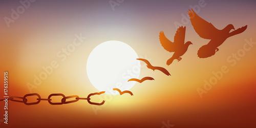 Fototapeta Concept de la liberté retrouvée, avec des chaînes qui se brisent et se transforment en une colombe qui s'envole au coucher du soleil