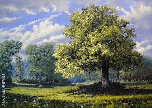 Obraz olejny krajobraz, drzewa, sztuka