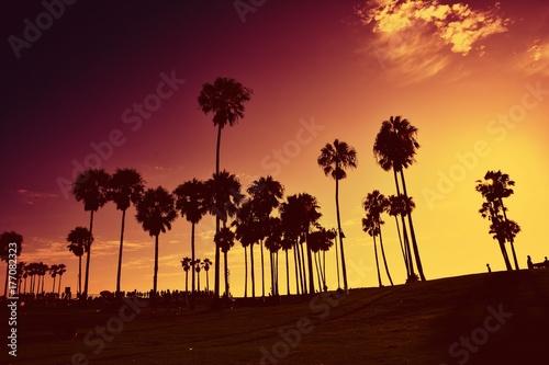 Sunset at Venice Beach, California, USA.