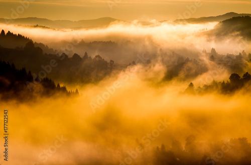 Mountain landscape in fog