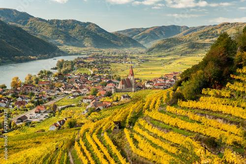 Canvas Print Weissenkirchen Wachau Austria in autumn colored leaves and vineyards