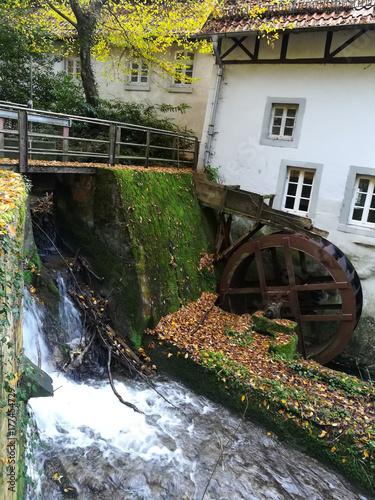 papiermühle berlebeck im herbst