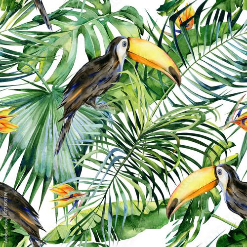 Fototapeta premium Bezszwowa akwareli ilustracja ptaka pieprzojada. Ramphastos. Tropikalne liście, gęsta dżungla. Strelitzia reginae kwiat. Malowane ręcznie. Wzór z tropikalnym motywem letnim. Liście palm kokosowych.