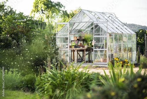 Fotografiet Glass greenhouse
