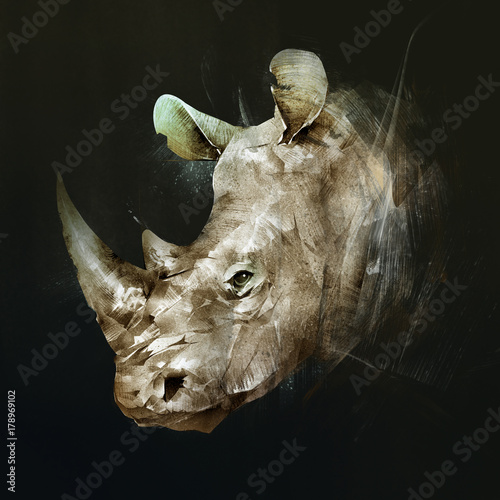 colored drawing of the muzzle of the Rhino on the side