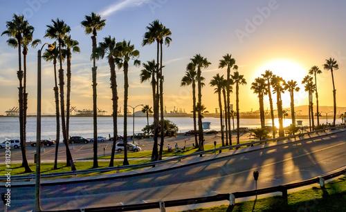 Vászonkép California sunset in the coast of Long Beach