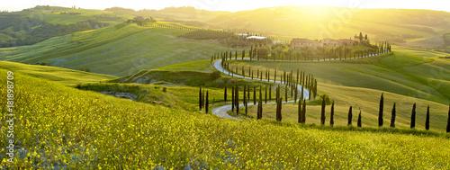 Fototapeta premium Krajobraz w Tuscany, Włochy