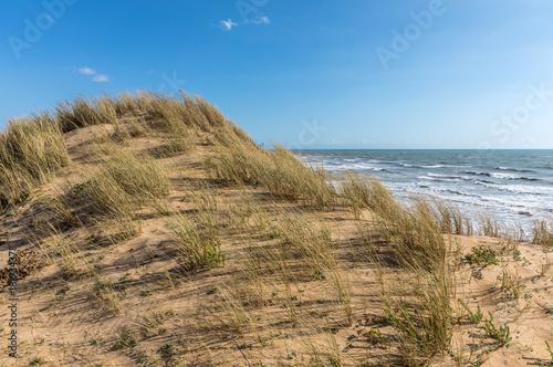 Canvas Print Dune de sable sur la côte d'Olonne-sur-Mer (Vendée, France)