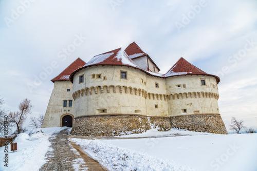 Vászonkép Castle Veliki Tabor in Croatia