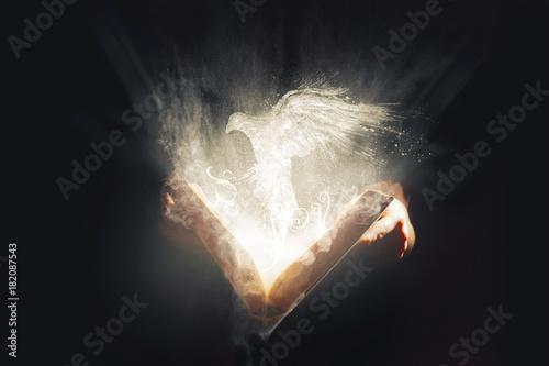Billede på lærred Dove flying from Bible