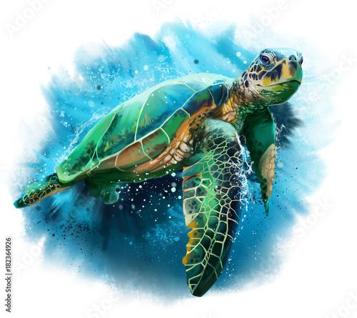 Fotografie, Obraz Big sea turtle watercolor painting
