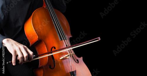 Cuadros en Lienzo Man playing for cello