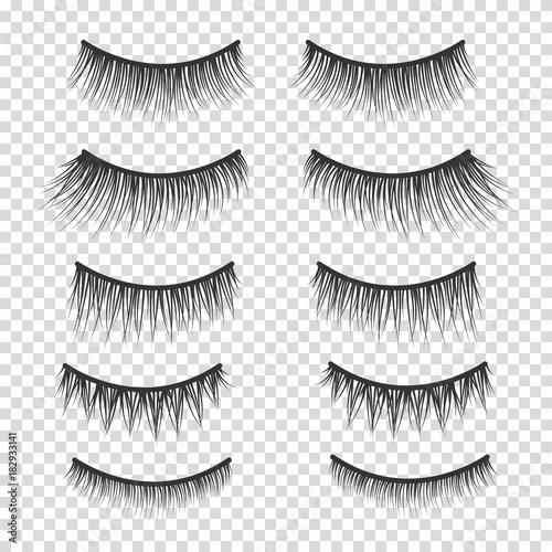 Feminine lashes vector set. False eyelashes hand drawn. Fototapeta