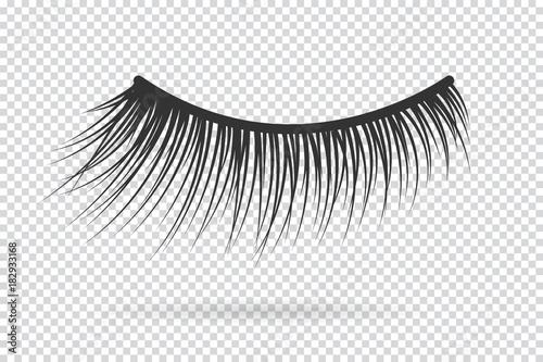 Fotografia Feminine lashes vector. False eyelashes hand drawn.