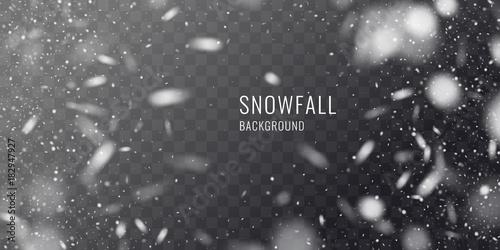 Fototapeta Vector realistic snowfall against a dark background