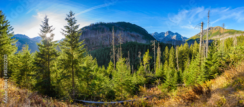 Panorama from road to Morskie Oko in Tatra mountains, Poland