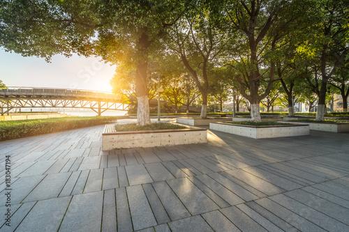 beautiful park at a sunny day, shanghai, china. Fototapeta