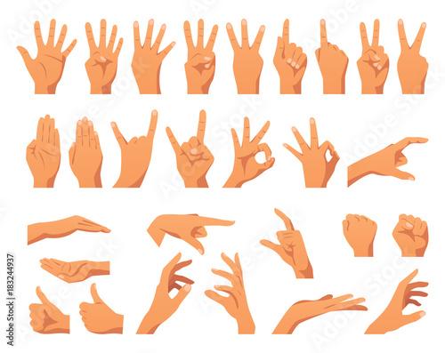 Fotografia various hands gestures