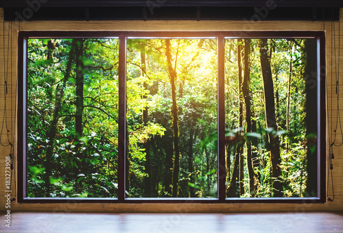 Obraz na płótnie tropikalny widok za oknem