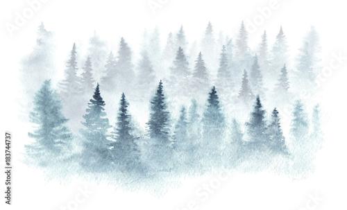 Zima las w mgle malował w akwareli.