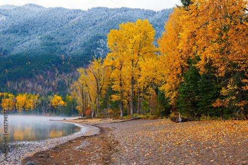 Obraz na plátně Autumn colors on shore of Lake McDonald in Glacier National Park, Montana