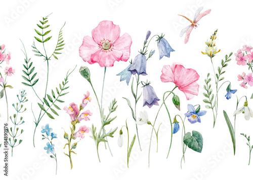 Fototapeta Akwarela kwiatowy wektor wzór