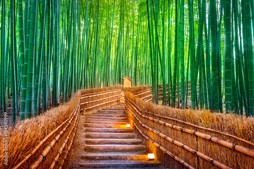 Fototapeta premium Bambusowy las w Kyoto, Japonia.