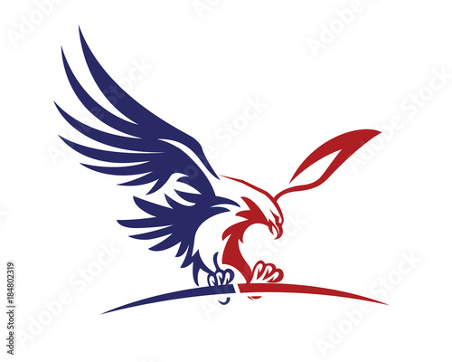 Canvas Print American Patriotic Eagle Special Force Logo