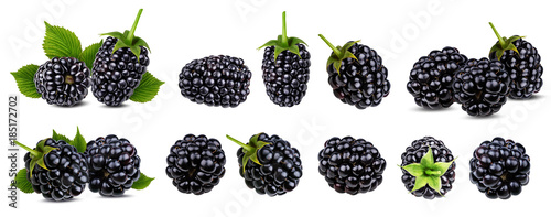 Canvas Print Fresh blackberry isolated on white background with clipping path