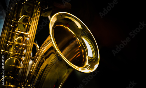 Obraz na plátně Saxophon
