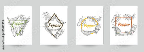 Fotografía Set of template for branding, cover package, identity, banner, promote, card, label with chili peppers in retro vintage hand drawn, sketches, engraved style