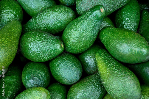green fresh avocado Fotobehang