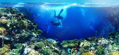 Photo underwater world scuba divers